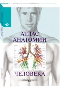 Атлас анатомии человека/малый формат