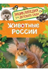 Животные России (Энциклопедия для детского сада)